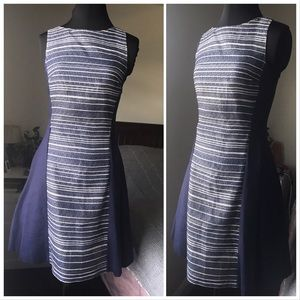 Armani Exchange Blue and White Fit and Flare Dress